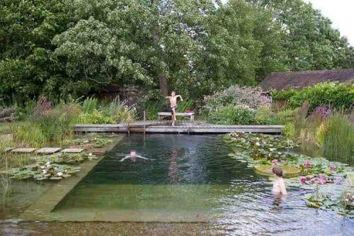 Plan de la piscine naturelle